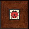 Ladybug in Legacy Frame