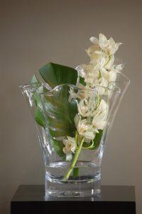 Medium Pure Anemone Vase