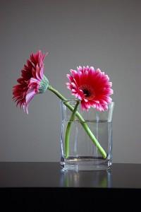 Petite Newbury Vase