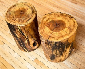 Sycamore Stump Side Table or Stool above view