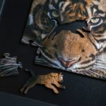 Amur Tiger Wooden Jigsaw Puzzle pieces