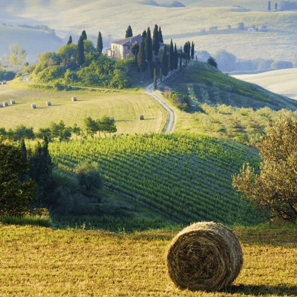 Campagna Toscana Italia