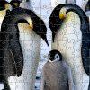 Small Emperor Penguin Zen Puzzle