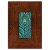Peacock Feather in Legacy Frame