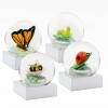 Mini Bugs Snow Globes (Set of 4)
