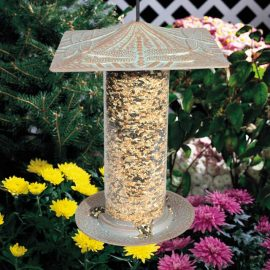 tall bird feeder dragonfly vertigris